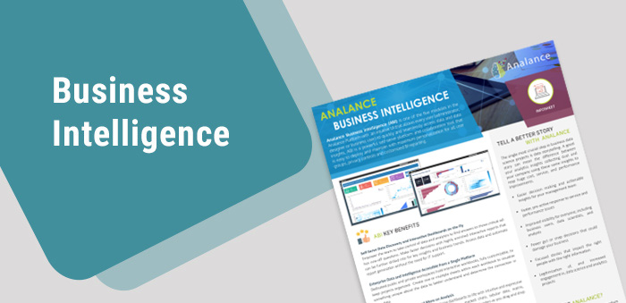 Product Brochure - Business Intelligence